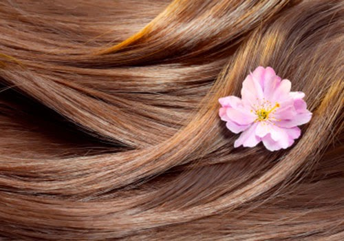 reasons of hair fall and essential vitamins