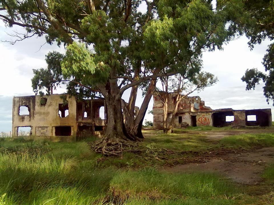 Ruinas del Hotel Argentino - Punta Indio - Pcia. de Buenos Aires - Argentina