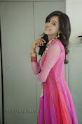 Vithika Sheru Photos at Prema Ishq Kadhal Success Meet-thumbnail-18