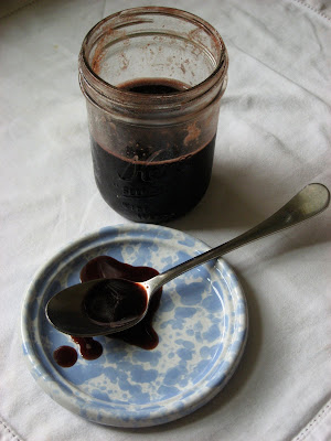 elderberry rose hip syrup