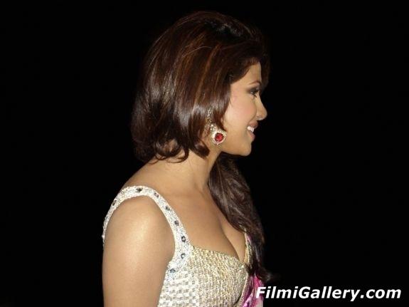 http://2.bp.blogspot.com/-RiWQ2-yA1hE/UCy9hYubcpI/AAAAAAAAA88/PEx58q7LCFg/s1600/Priyanka_Chopra_Sexiest_Saree_Pose_01.jpg