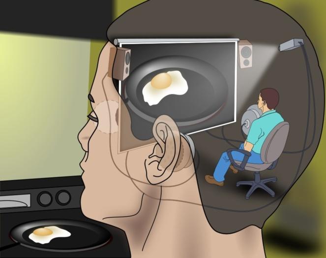 El yo es una ilusión que vive en una realidad virtual