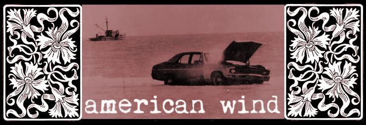 American Wind