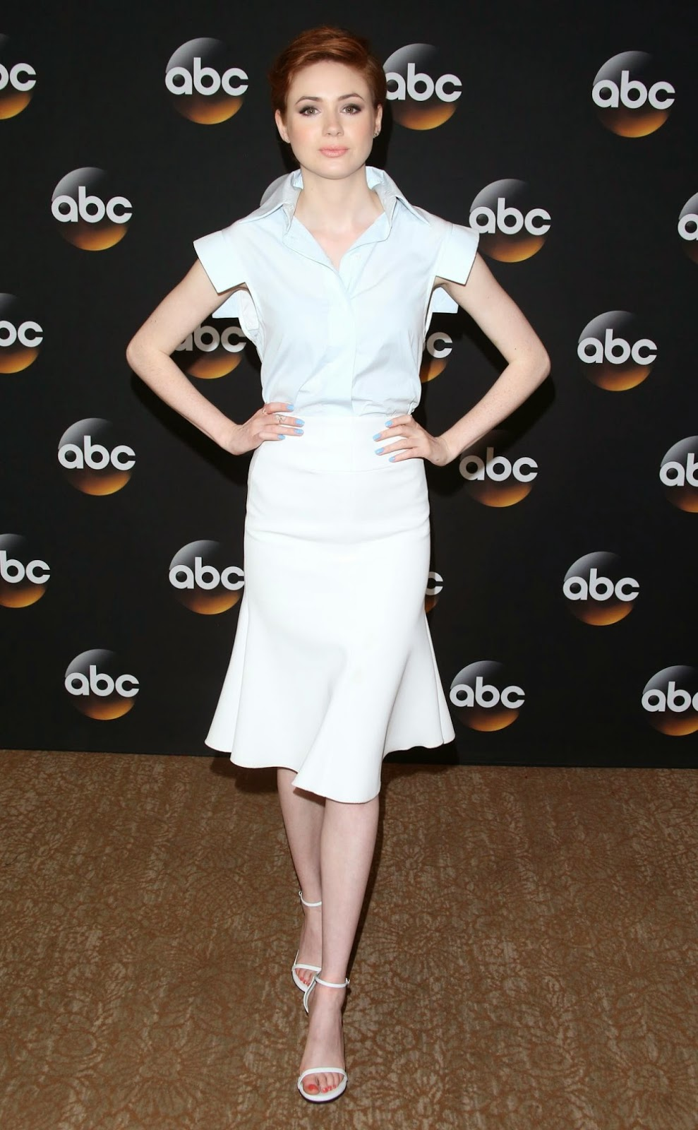 Karen Gillan in an Ellery high-waisted skirt at the 2014 Television Critics Association Summer Press Tour