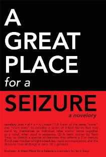 A Great Place for a Seizure (Terry Tracy)