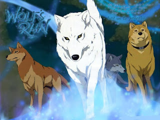 white wolf anime wallpaper wolve