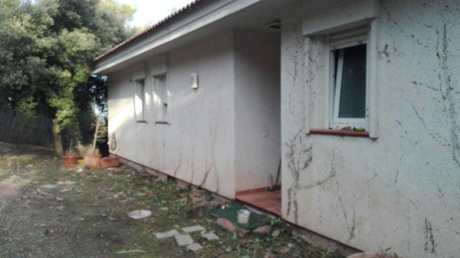 Serviciosdejardineriabasica jardineria barata 90 quitar for Jardineria sabadell