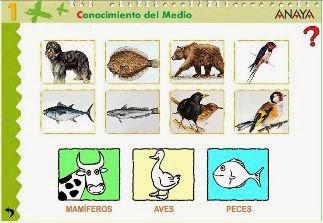 http://www.ceipjuanherreraalcausa.es/Recursosdidacticos/PRIMERO/datos/03_cmedio/03_Recursos/actividades/2losAnimales/act7.htm