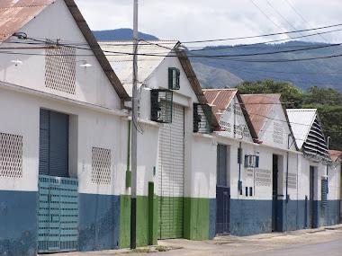 ZONA INDUSTRIAL SAN MIGUE(ARTICULO PUBLICADO REVISTA DIGITAL CONHESREMI,)