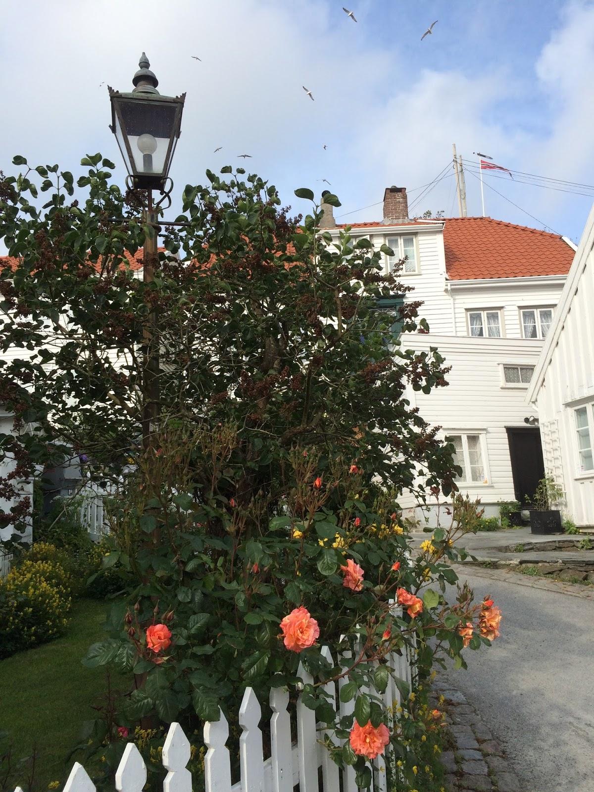norges beste datingside Skudeneshavn