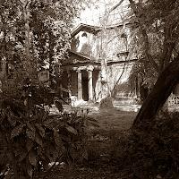 Das Bild zeigt ein Haus, das sich hinter Bäumen und Büschen zu verstecken scheint.