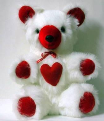 Free beautiful photos collection download most beautiful teddy bear free downlaod very cute teddy bear desktop wallpapers voltagebd Choice Image