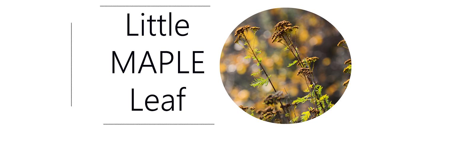 little maple leaf