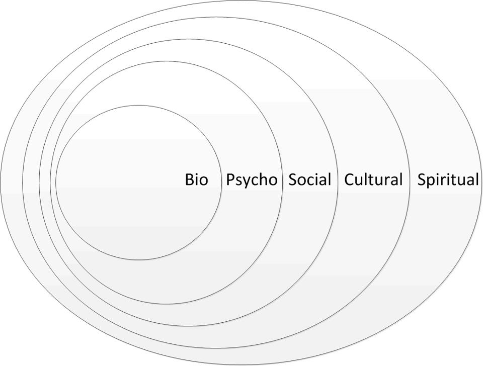 biopsychosocial assessment in clinical health psychology pdf