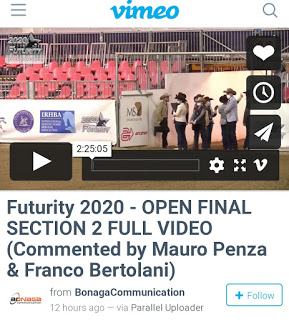 VIDEO: RIVEDI LA FINALE OPEN DEL FUTURITY 3YRS LEV.4