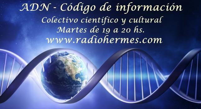 A D N - Código de información