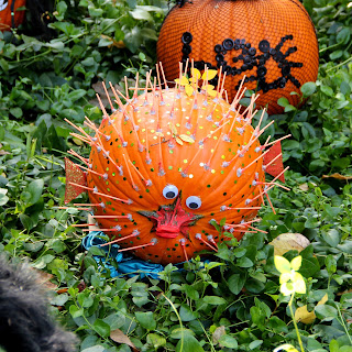 Blowfish Pumpkin