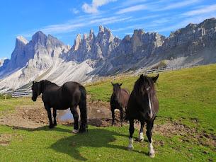 Dolomiti: paradiso montano