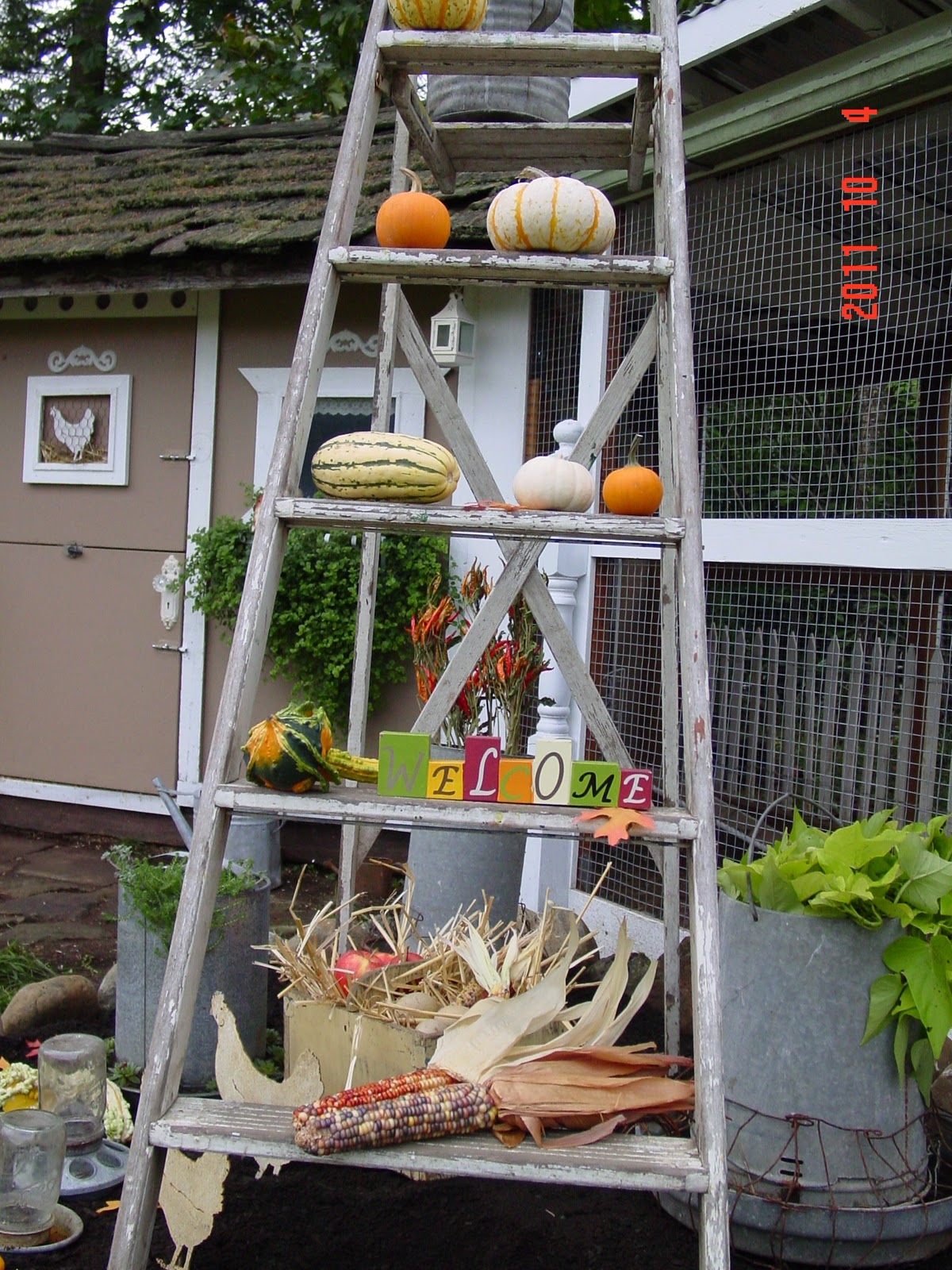 Shabby Chic Tiny Retreat The chicken coop is dressed for Fall