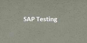 hsfp SAP testing image