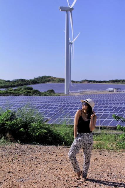 H&M zebra-print trousers, pagudpud ilocos norte, bangui windmills, best of Philippines