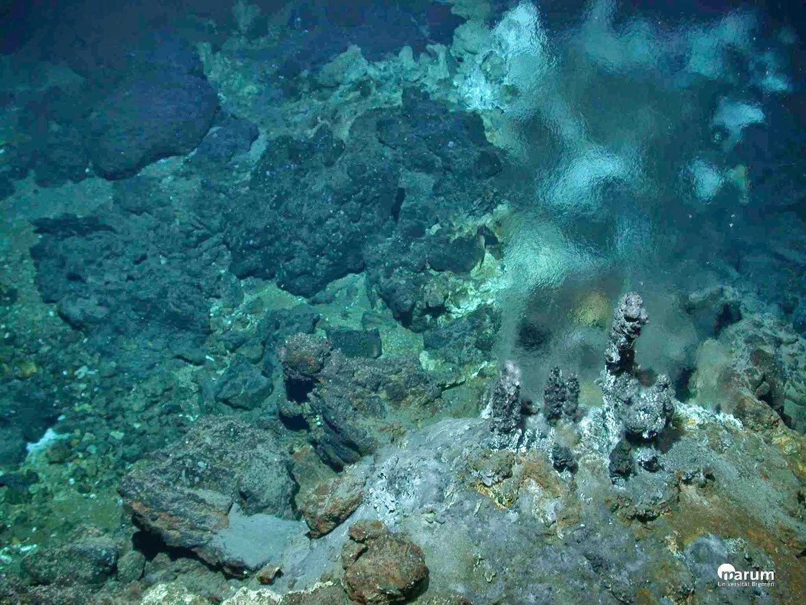 Abyssal Plains: Lantai Dasar Samudera Dalam Yang Luas