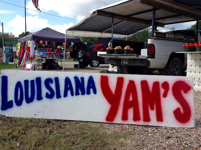 Grammar Mistake Sign-Louisiana Yam's
