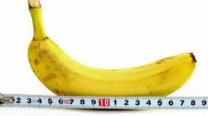 Ukuran Normal Rata Rata Penis Pria Di Dunia