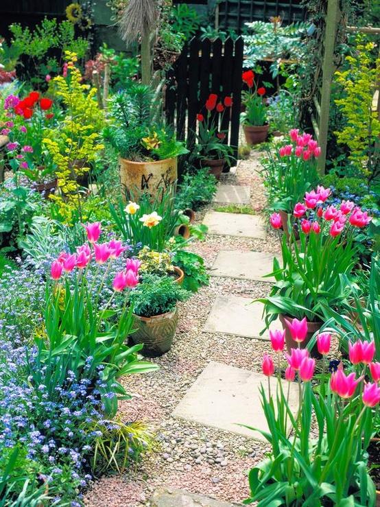 Jard n y terrazas fotos de jardines y plantas espectaculares - Plantas y jardin ...