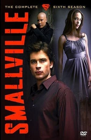 Série Smallville - 6ª Temporada 2006 Torrent