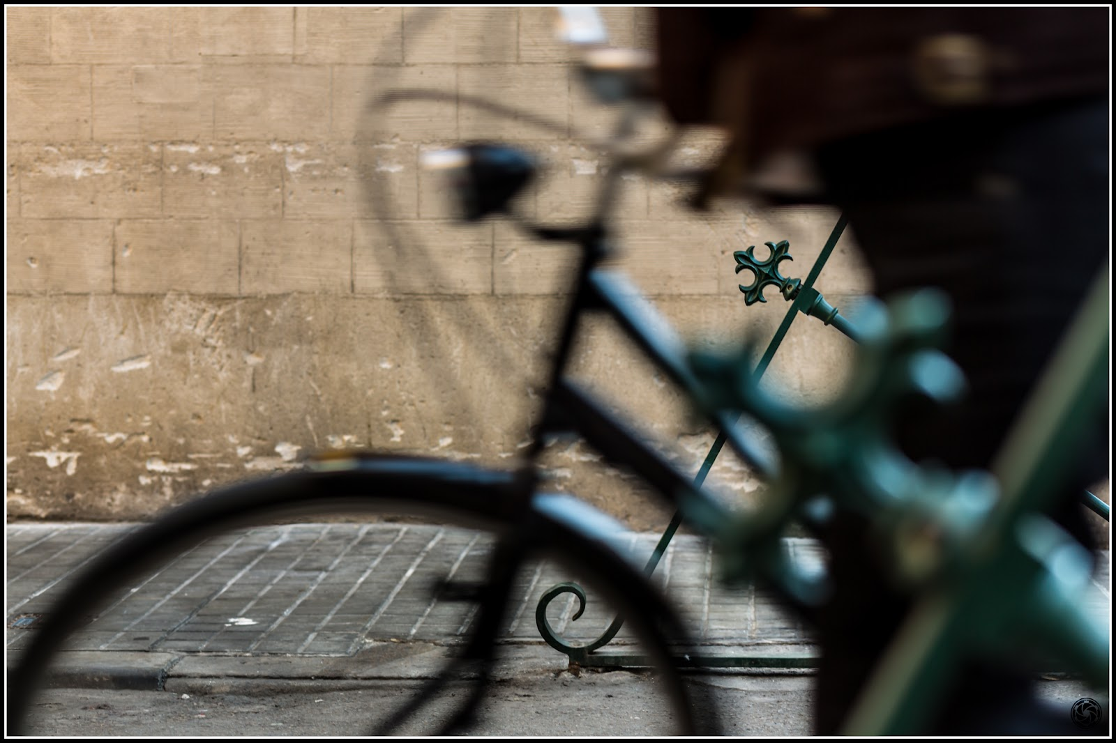 ... y, en medio, el tránsito :: Canon EOS 5D MkIII | ISO100 | Canon 85mm | f/4.0 | 1/50s
