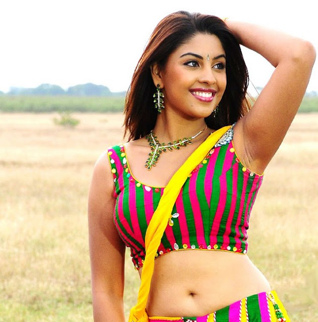 Richa_Gangopadhyay_Smile_In_Without_Saree_Naval_Photos_Pics_02.jpg