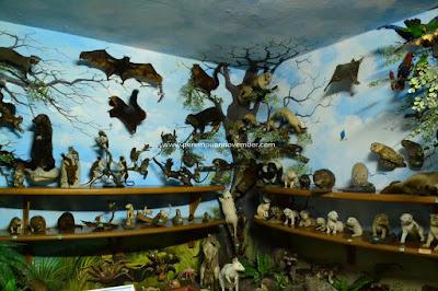 Galeri rahmat shah wisata medan