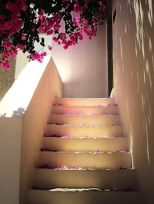 Escalera Flores Stairs