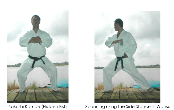 Wansu fourth kata hidden fist