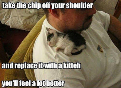 Take the chip off your shoulder and replace it with a kitteh, you'll feel a lot better.