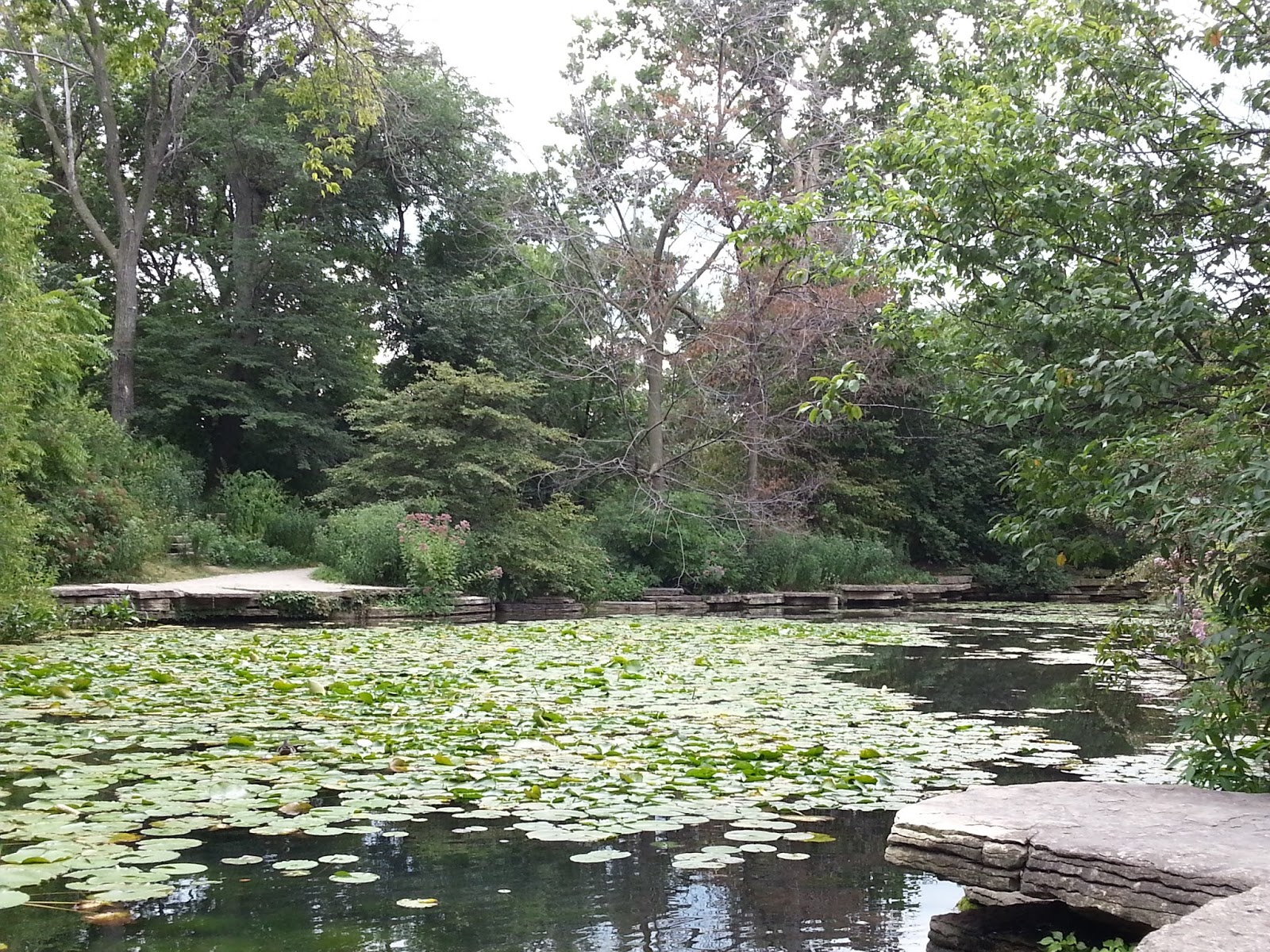 The Chicago Real Estate Local: Free kids fun: Sculpture, spelunking and giraffe calling in ...