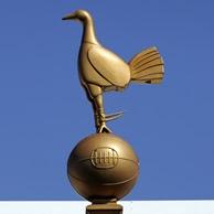 Spurs stadium symbol