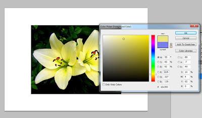 اختيار-القيم-اللونية-بالفوتوشوب