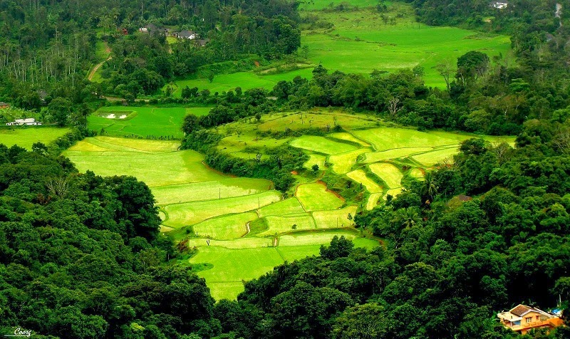Pictureque Landscape of Coorg makes it a Popular Hill Station in India