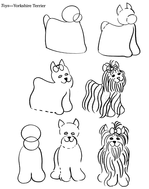 Line Drawing Of Yorkshire Terrier : Inkspired musings puppy love