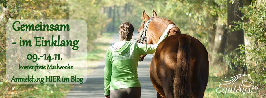 Equisyst ® - Systemische Aufstellungen          für Pferd und Mensch