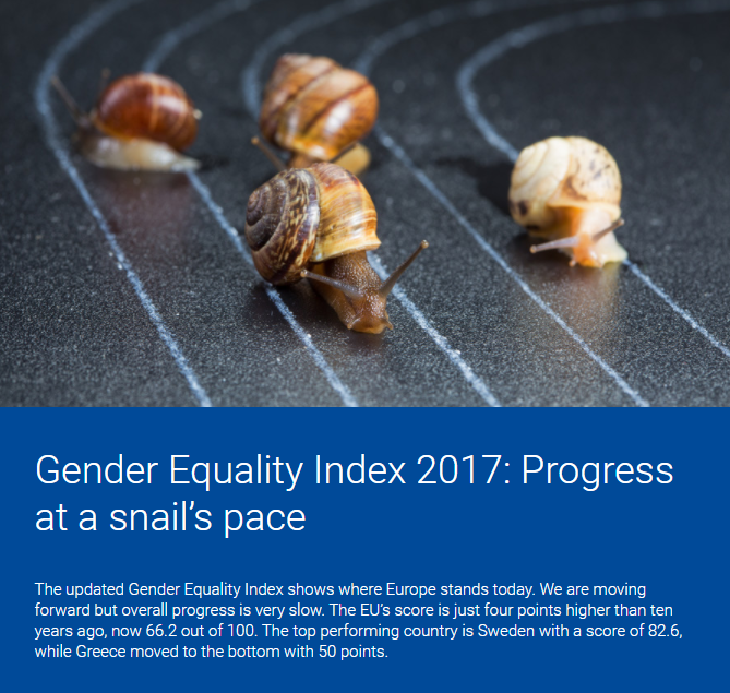 «GENDER EQUALITY INDEX 2017»