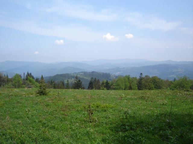 Image Result For Gdzie Jest Burza
