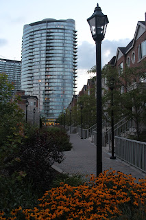 David Pylyp, Humber Bay Shore, Condos
