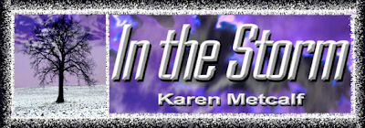 In The Storm Blog Tour