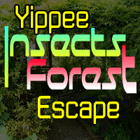 YippeeGames Insects Forest Escape