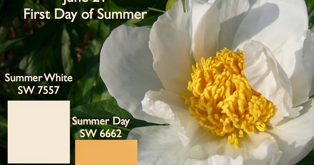 Color Specialist In Charlotte First Day Of Summer
