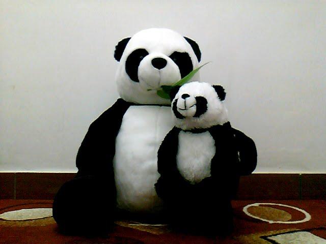 boneka panda ini lucu bangeeett. kayak emak sama anak :3