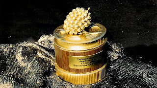 golden raspberry award